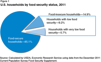 Chart of food insecure households from the USDA